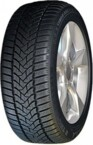 Dunlop SP Winter Sport 5 205/55R16